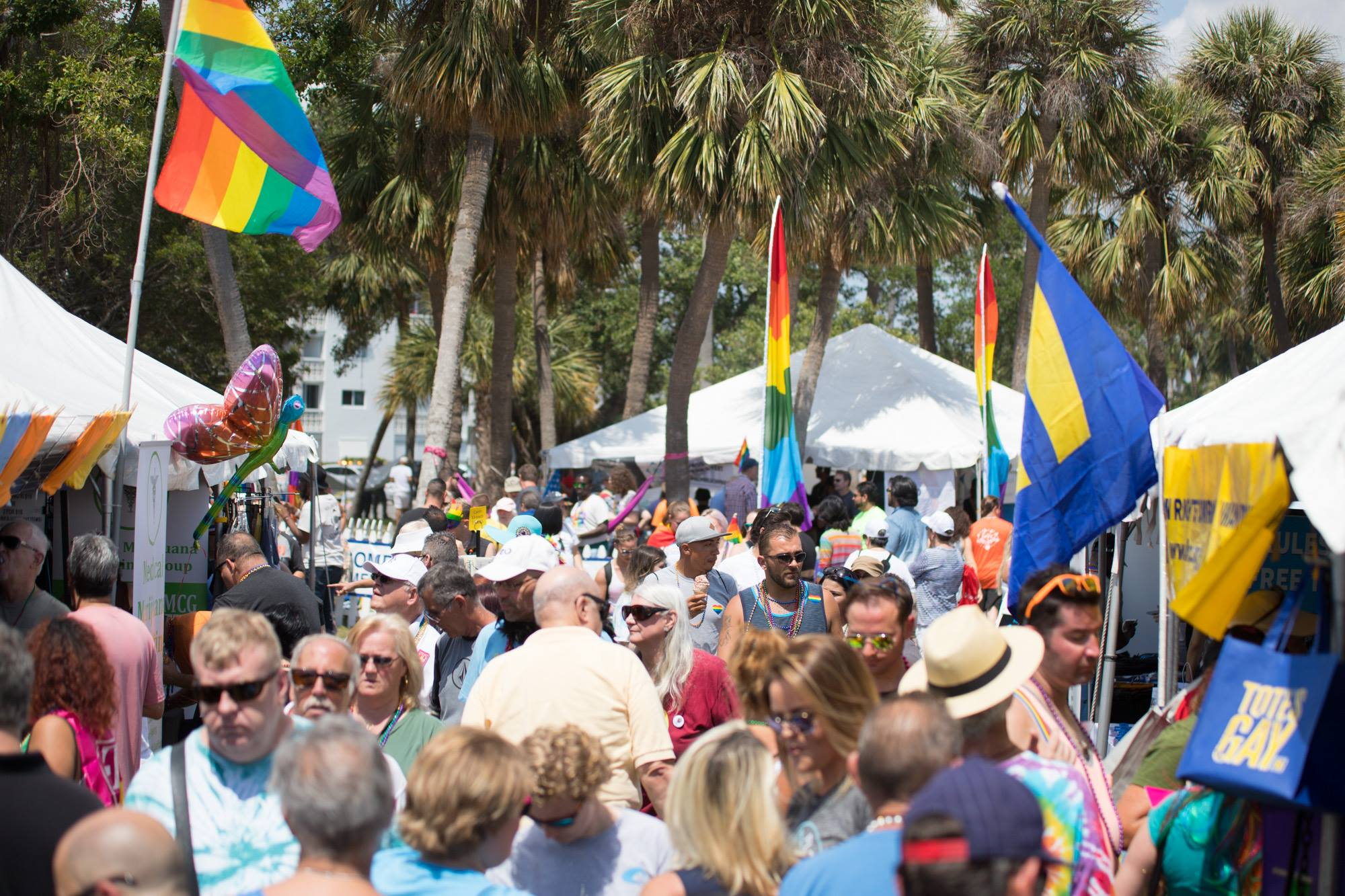 Palm beach county gay and lesbian
